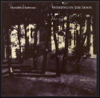 Wishing_on_the_Moon_490138c690990