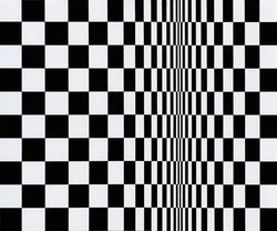 Bridget_Riley_Movement_in_Squares