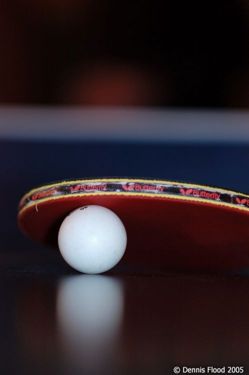 L-ping-pong-ball-and-paddle_7506