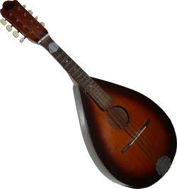 Mandolin1
