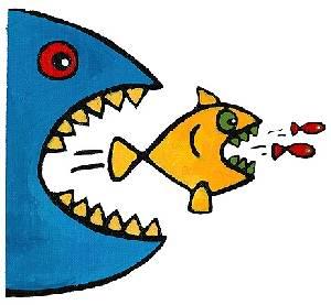 Fish-eat-fish1