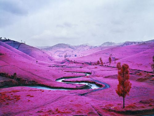 Richard-mosse-platon-2012-web