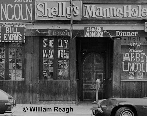Shellys-manne-holec2a9