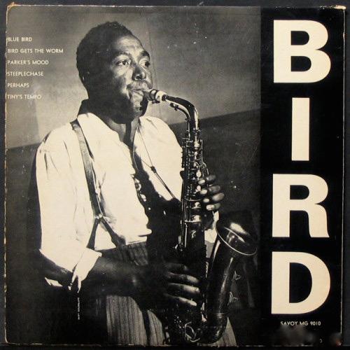 Birdsavoybe-500x500