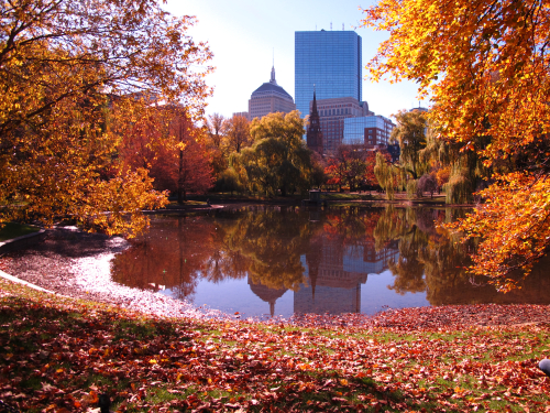 Boston-fall-1