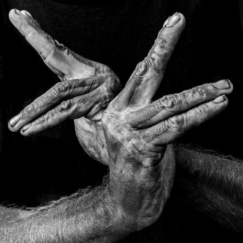(c)Irving Greines + hands